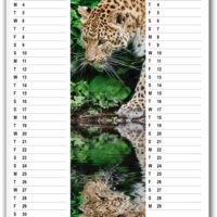 7 page Wall Calendar; 2 months per view. CA-8601