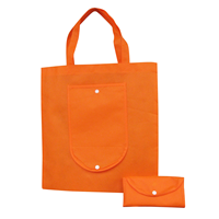 Non Woven Foldable Shopping Bag. D-NWB011