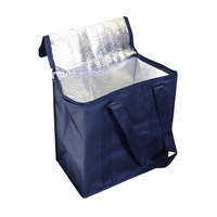Non Woven Cooler Bag With Zipped Lid. D-NWB016